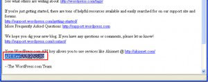API KEY がメールで届く